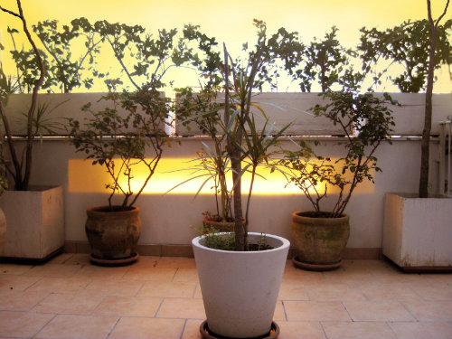 Maison Palermo - 4 personnes - location vacances  n°35746