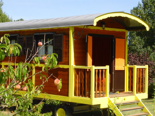 Gite Saint Salvy - 5 personnes - location vacances  n°36120