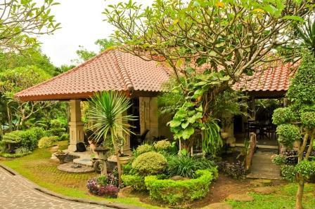 Bali Lovina photo