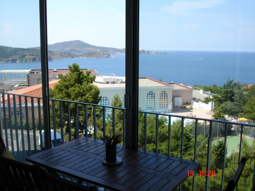 Flat in Banyuls sur mer - Vacation, holiday rental ad # 36343 Picture #12