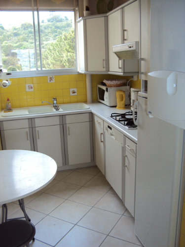 Flat in Banyuls sur mer - Vacation, holiday rental ad # 36343 Picture #13