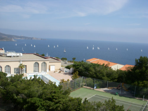 Appartement 4 personnes Banyuls Sur Mer - location vacances  n°36343