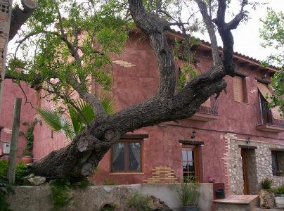 Gite à Camarles pour  4 •   avec terrasse   n°36665