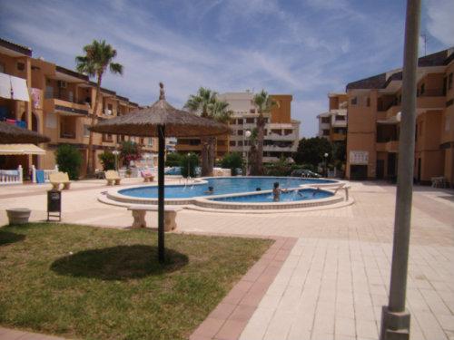 Apartamento en torrevieja punta prima para alquilar para 4 personas alquiler n 37001 - Alquilar apartamento en torrevieja ...
