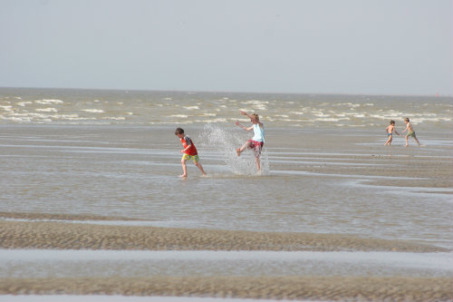 Appartement in Cayeux sur mer - Anzeige N°  37082 Foto N°16 thumbnail
