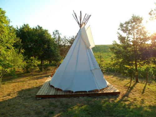 Escorneboeuf - 4 personnes - location vacances  n°37114