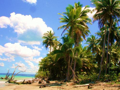 Playa magante -    vue sur mer