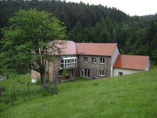 Gite Wangenbourg-engenthal - 6 people - holiday home  #37223