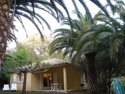 Sainte Lucie De Porto-vecchio - 4 personen - Vakantiewoning  no 37252