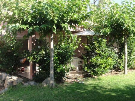 Maison Sainte Lucie De Porto Vecchio - 6 personnes - location vacances  n°37569