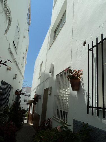 House in Conil - Vacation, holiday rental ad # 37806 Picture #16
