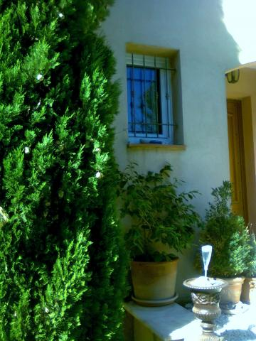House 2 people Hyeres Les Palmiers - holiday home  #37810
