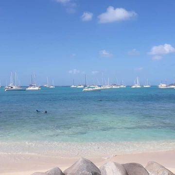 Studio in Saint Martin - Vacation, holiday rental ad # 37871 Picture #16