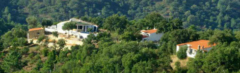 House in Sao Bras De Alportel - Vacation, holiday rental ad # 37886 Picture #9