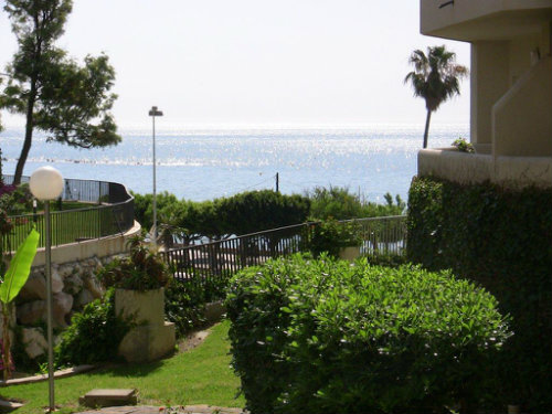 Flat in Málaga - Vacation, holiday rental ad # 38134 Picture #15