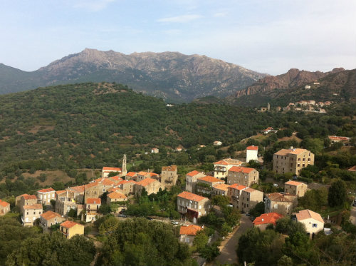 House in FOZZANO - Vacation, holiday rental ad # 38286 Picture #4