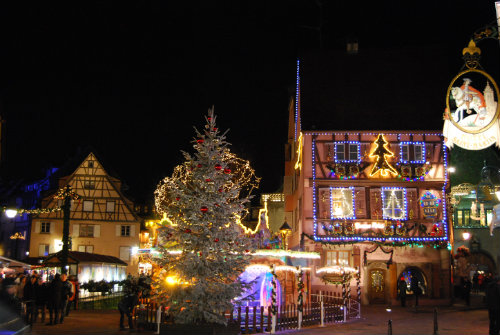 Gite in Colmar - Vacation, holiday rental ad # 38308 Picture #11
