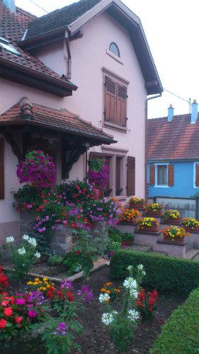 Gite Neubois - 6 personnes - location vacances  n°38378