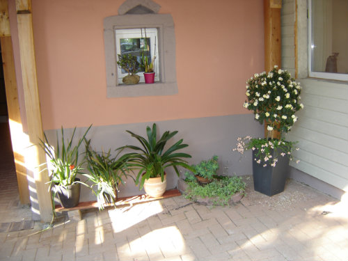 House in Kintzheim - Vacation, holiday rental ad # 38495 Picture #7