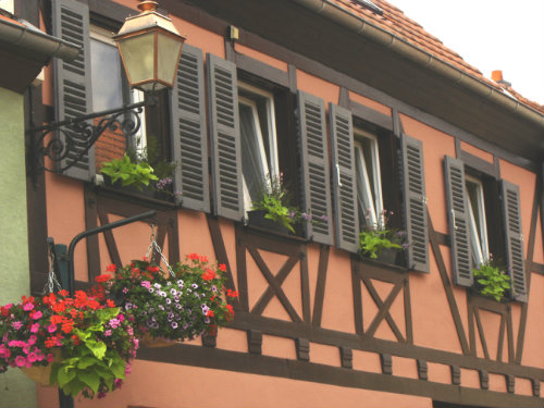 Maison 9 personnes Kintzheim - location vacances  n�38495