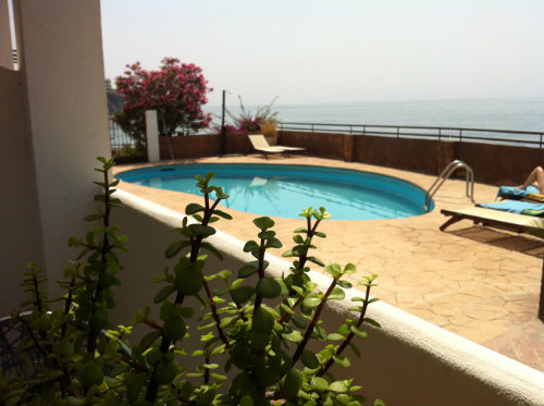 Flat in Benalmádena Costa - Vacation, holiday rental ad # 38523 Picture #13