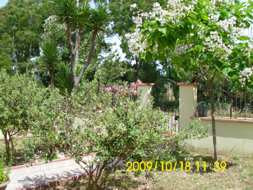 Maison Tortoli - 6 personnes - location vacances  n°38569