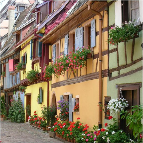 Gite in Colmar - Vacation, holiday rental ad # 38604 Picture #13