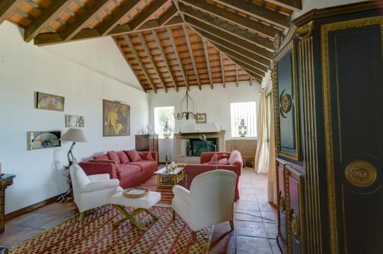 Gite Benalup - 12 personnes - location vacances  n°38760