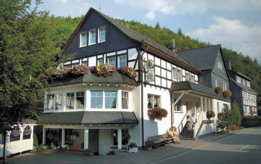 Huis in Schmallenberg voor  4 •   huisdieren toegestaan (hond, kat... )