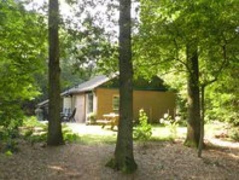 Huis Ruinen - 4 personen - Vakantiewoning  no 38858