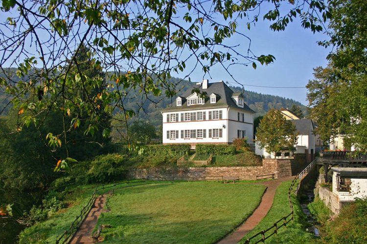 House Malberg - 16 people - holiday home  #38963