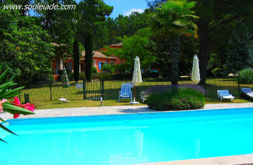 House Bollène - 40 people - holiday home  #39075