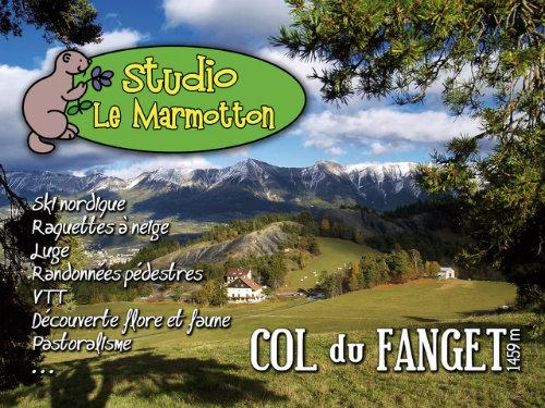 Studio Seyne Les Alpes - Auzet - 4 personnes - location vacances  n°39081