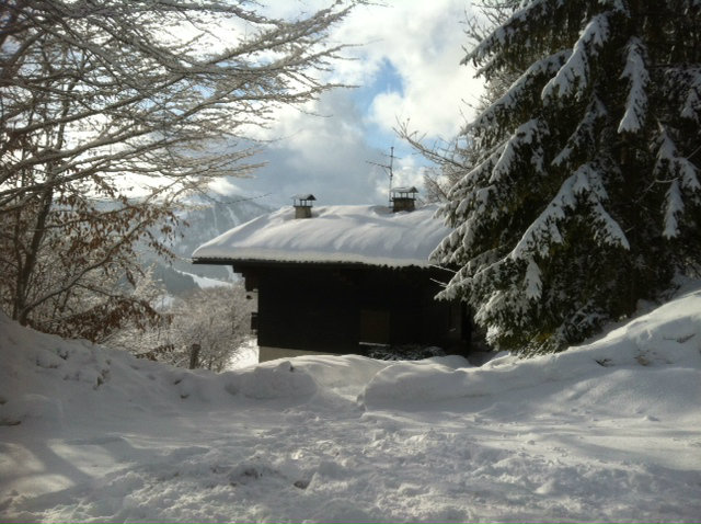 Chalet in La Clusaz - Vacation, holiday rental ad # 39105 Picture #11