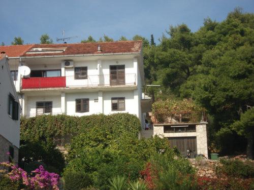 House Jelsa - 6 people - holiday home  #39402