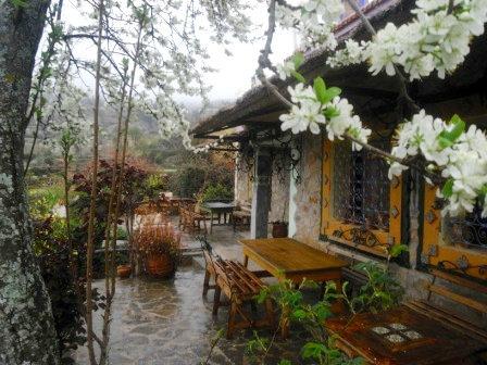 Gite Khizana (bab Taza) - 16 personnes - location vacances  n°39431