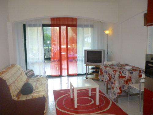 Studio Ascain - 3 personnes - location vacances  n°39567