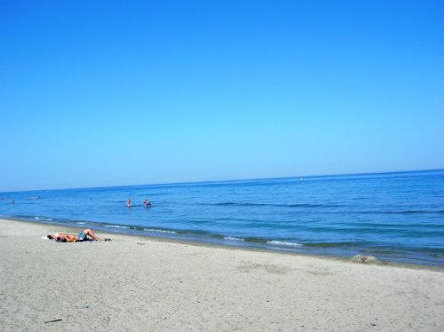 Maison Poggio Mezzana - 6 personnes - location vacances  n°39684