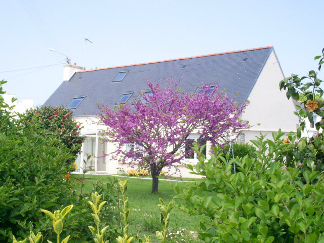 Gite Treffiagat - 5 personnes - location vacances  n°39946