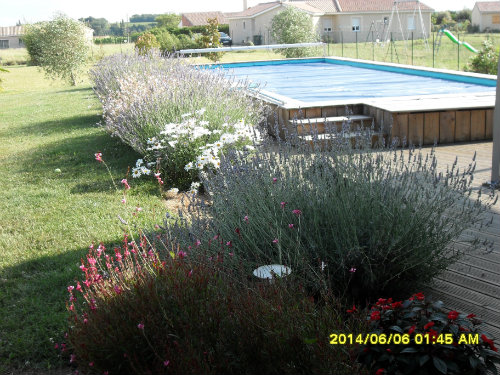 Gite Ruch - 3 personnes - location vacances  n°39950
