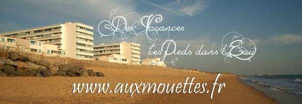 Appartement St Hilaire De Riez - 5 personnes - location vacances  n°40193