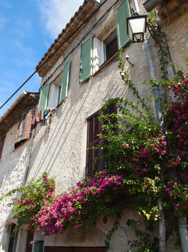 House in Vence - Vacation, holiday rental ad # 40195 Picture #9