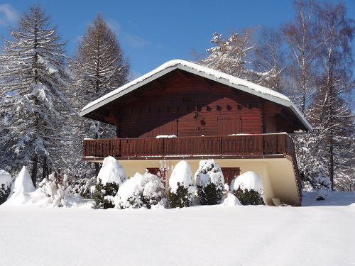 Chalet Le Frasnois - 5 people - holiday home  #40228