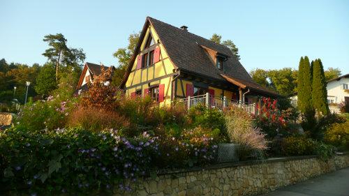 Gite Raedersdorf - 6 personen - Vakantiewoning  no 40236