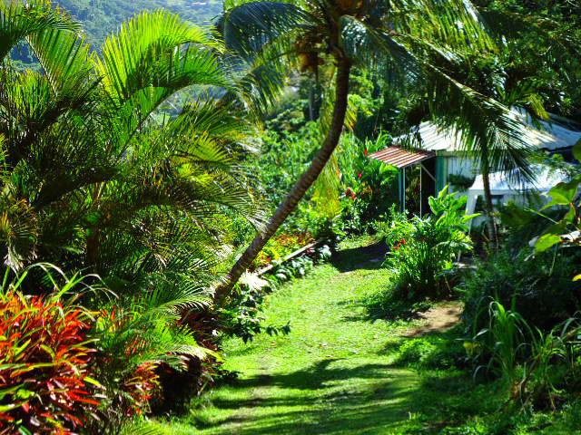 Maison Saint Pierre - 4 personnes - location vacances  n°40358
