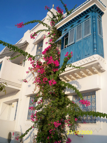 Gite in Djerba Midoun - Vacation, holiday rental ad # 40407 Picture #11