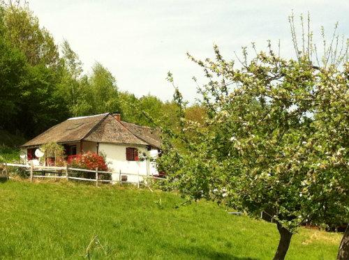 Maison Audressein - 12 personnes - location vacances