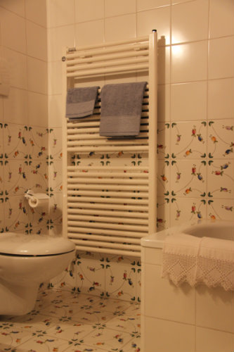House in Florence - Vacation, holiday rental ad # 40613 Picture #13