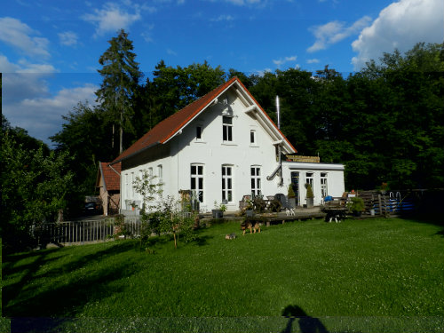 House Suddendorf - 6 people - holiday home  #40680