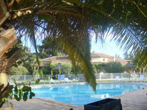 Appartement Lecci  - location vacances